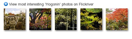 View most interesting 'Hogonin' photos on Flickriver
